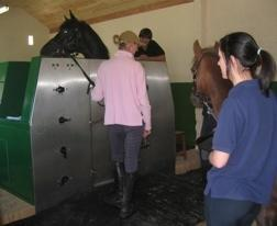 CET Equine Spa: References Sue Hyland