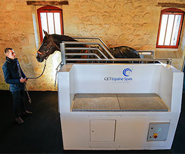 Equine Hydrotherapy Treatment at Chateau Malleret, France