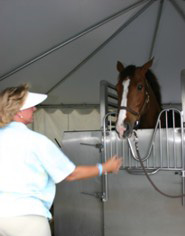 CET Equine Spa: References Katie Monahan-Prudent